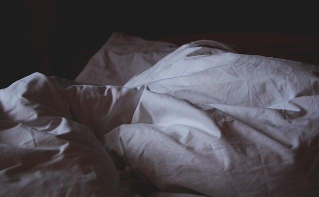Le fléau des punaises de lit